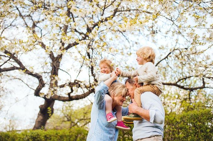 Senior grandparents with grandchildren standing under tree in blossom in spring.