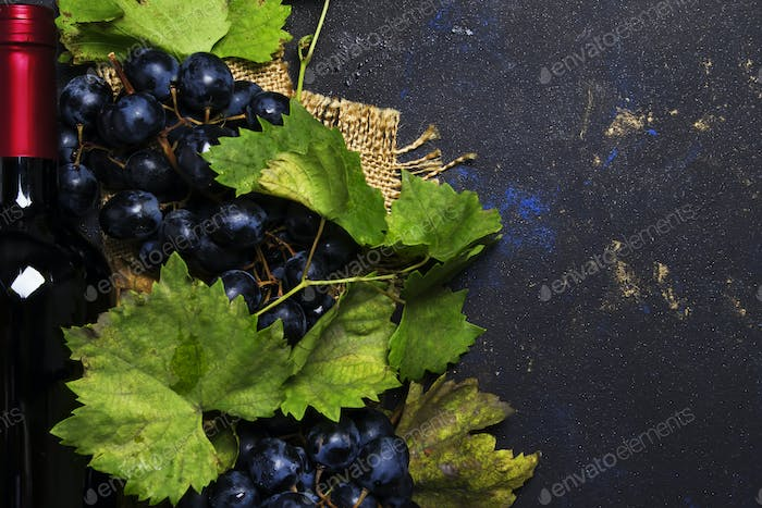 Red wine in bottle and blue grapes