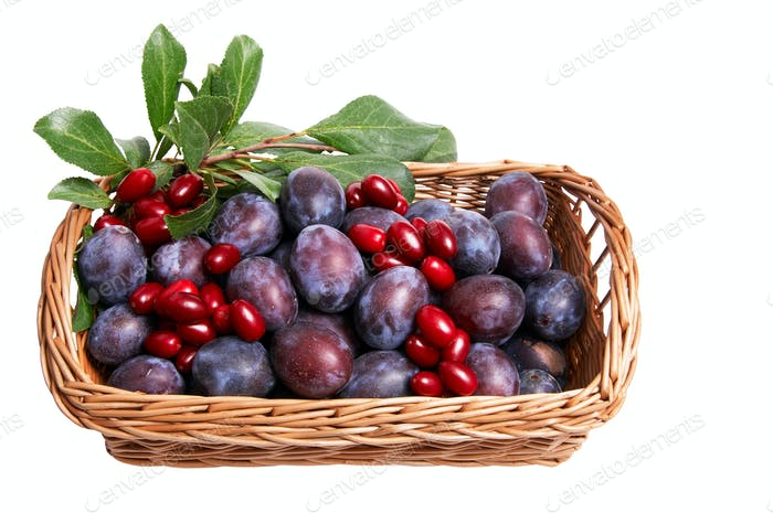 Juicy autumn fruits in the basket..