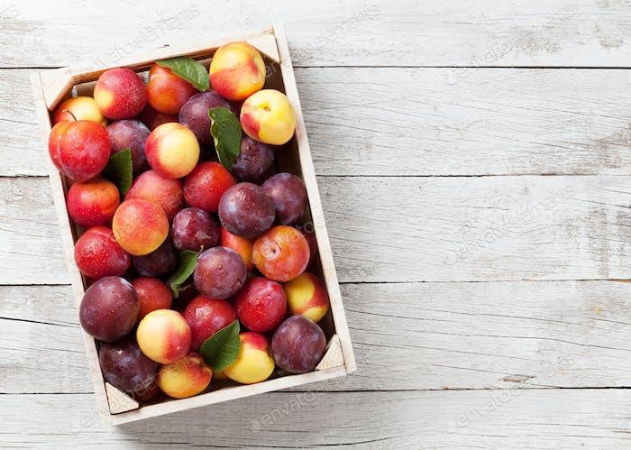 Frische reife Pfirsiche und Pflaumen