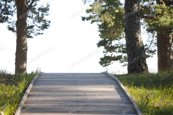 Wooden Footpath Through a Park