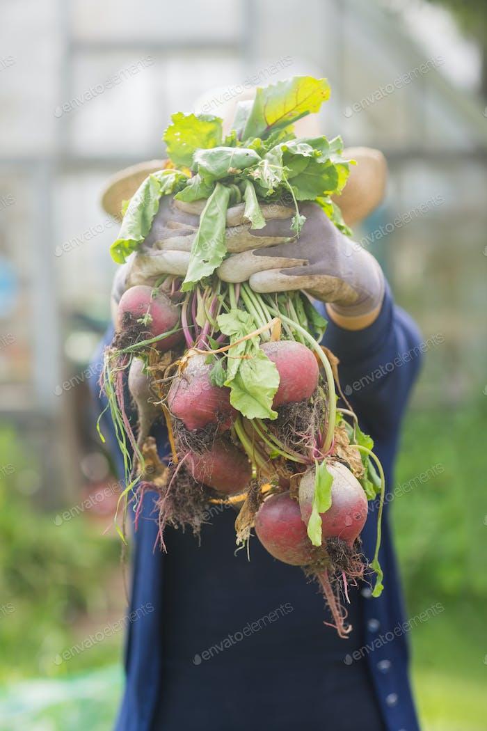 Mujer mostrando verduras cultivadas en Página de inicio en el jardín