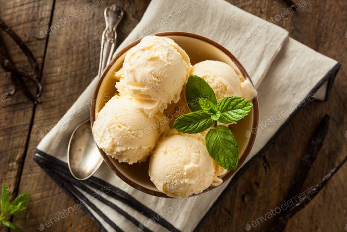 Homemade Organic Vanilla Ice Cream