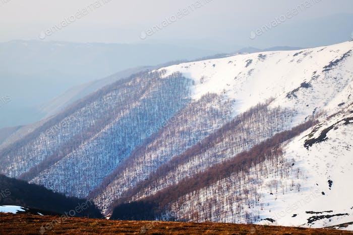 Schneebedeckte Hügel und rotes Gras