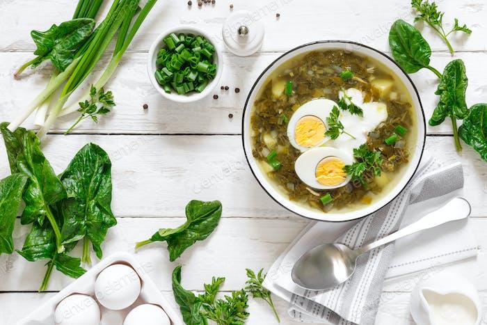 Grüne Sauerampfer- und Spinatsuppe mit gekochtem Ei und Sauerrahm auf weißem rustikalem Holztisch, Draufsicht