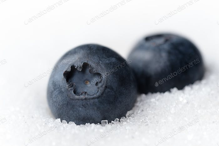 Sweet blueberries isolated over white sugar background.