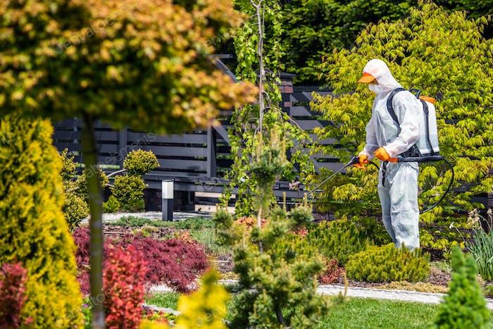 Fungizide von Hinterhof-Gartenpflanzen von professionellem Gartenarbeiter
