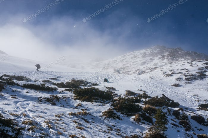 Person Hiking in Snowy Mountains, Scenic Landscape, Ukraine, Carpathians