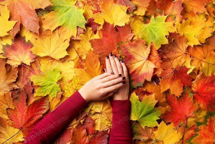 Weibliche Hand über Herbst Blätter Hintergrund. Sonniger Tag, warmes Wetter. Goldenes Herbstkonzept