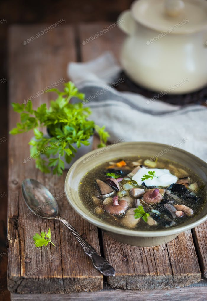 Delicious homemade wild mushrooms soup on rustic wooden backgrou