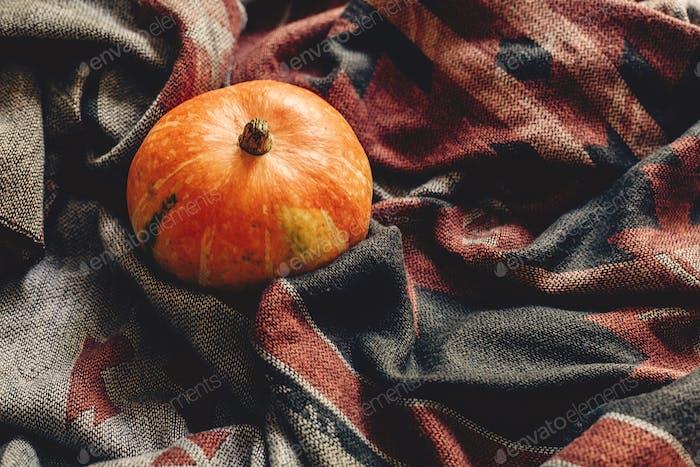 Herbst Kürbis auf stilvolle Schal Stoff flache Lay