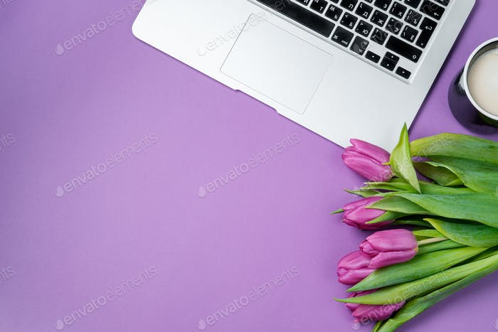 Woman desktop with Laptop, morning coffee and tulips on violet background.
