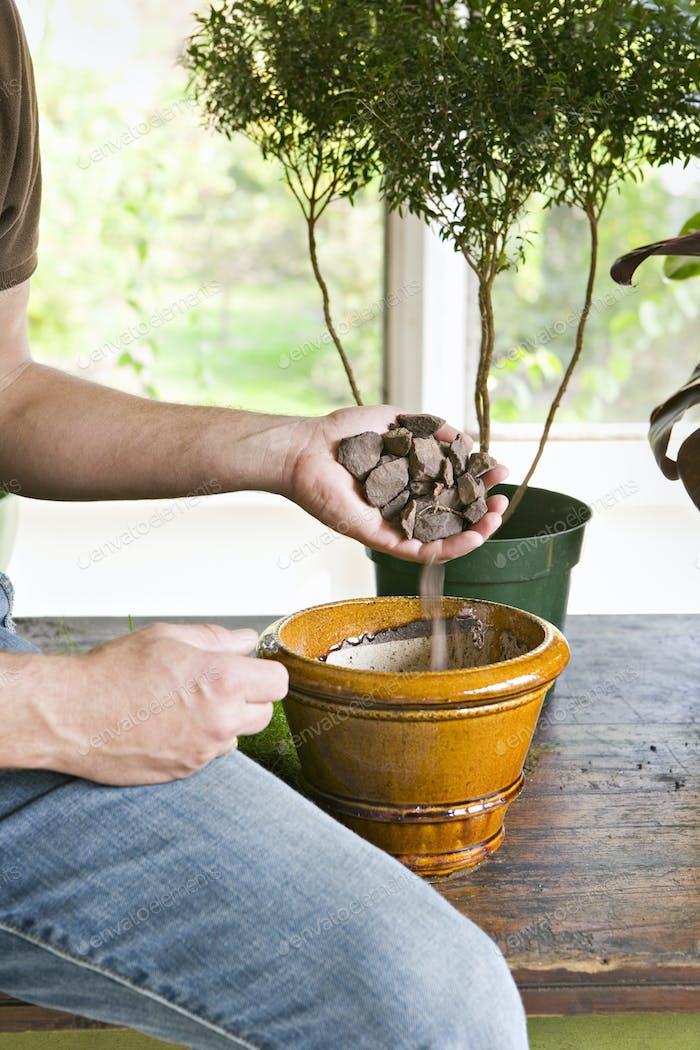 A person repotting houseplants.