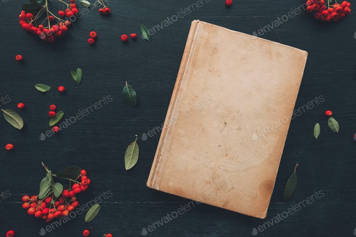 Flat lay vintage hardcover book, top view