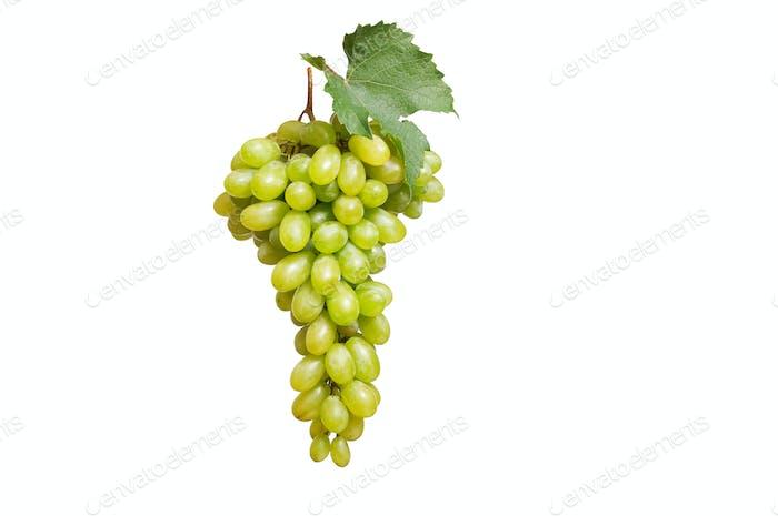 Tasty grape on a white