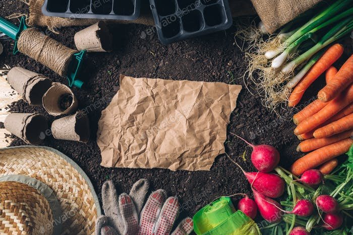 Crumpled paper copy space for organic farming concept, top view
