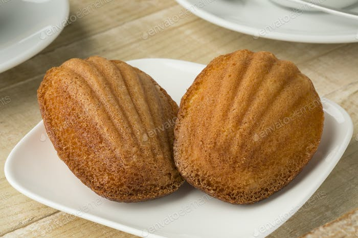 Fresh baked French madeleines