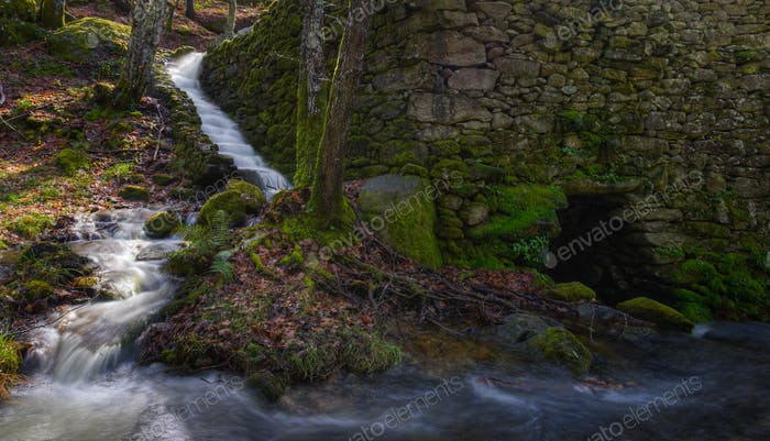 Old water mill in a forest on the banks of a stream