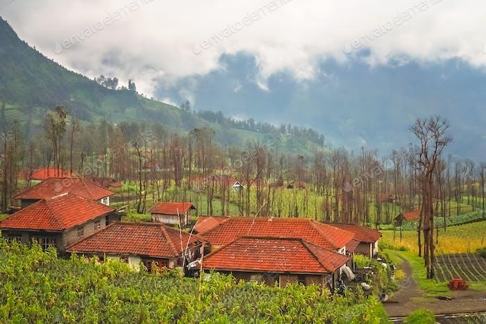 Cemoro Lawang village in Java