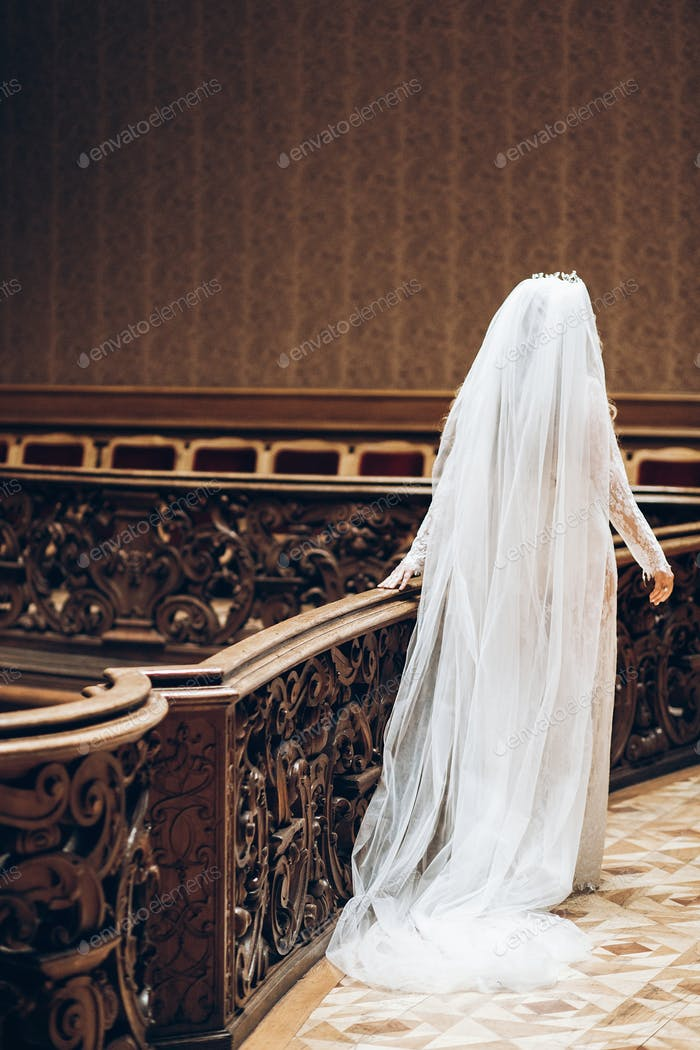 Beautiful bride with long veil in lace robe