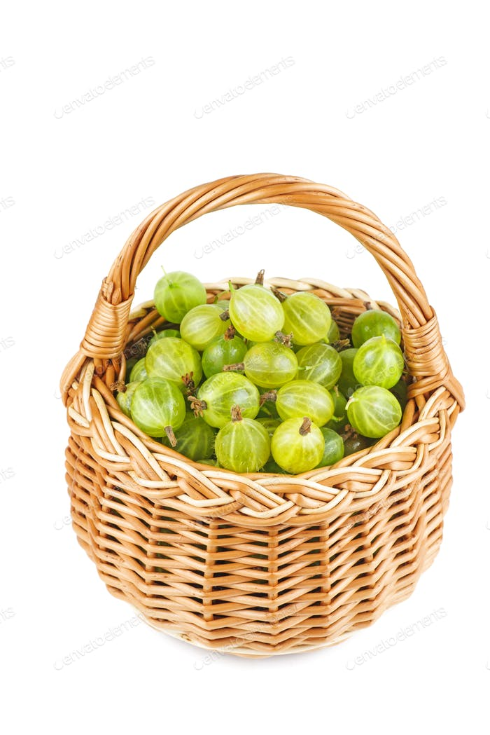 Gooseberries in wicker basket isolated on white background