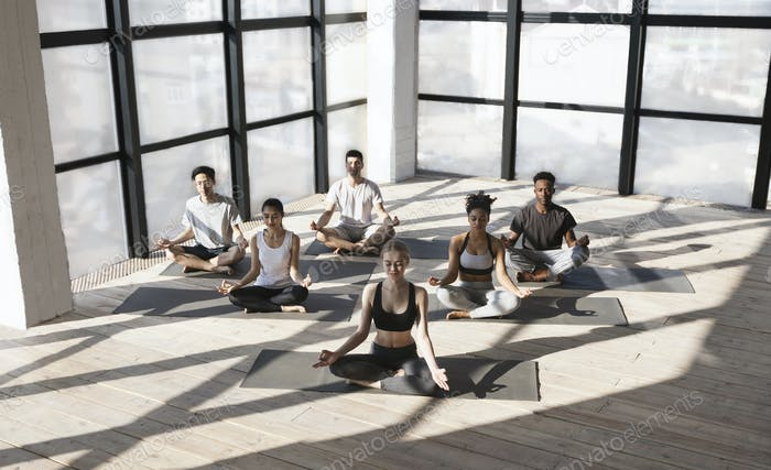 Multiethnic Group Of People Sitting In Lotus Position, Making Meditation Exercises