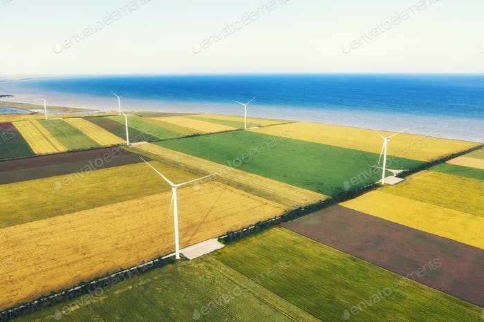 A view from the air on a wind power plant. Alternative energy sources