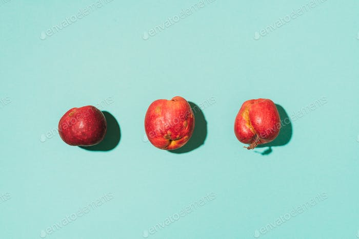 Ugly fruits concept. Organic red apples on blue background. The concept of ecology, not plastic