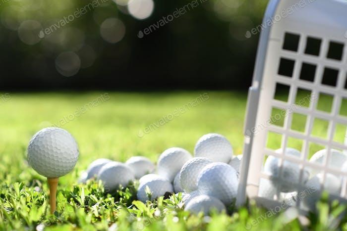 Golf & Golf
