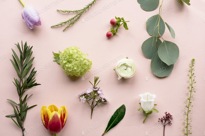 Various of Fresh Flowers on Pink Background