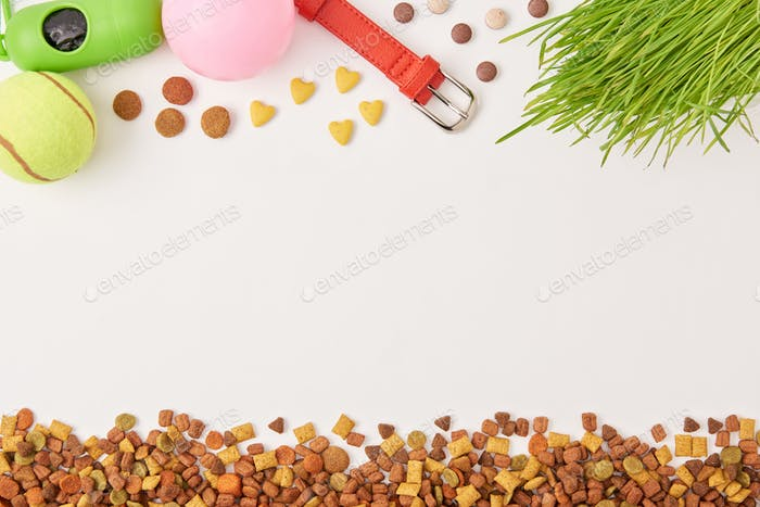 elevated view of arranged balls, dog collar and pile of pet food on white surface