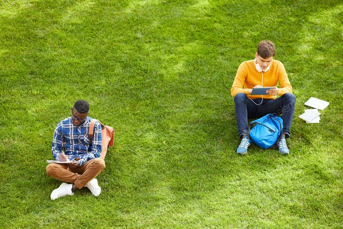 Students Sitting on Lawn in Campus