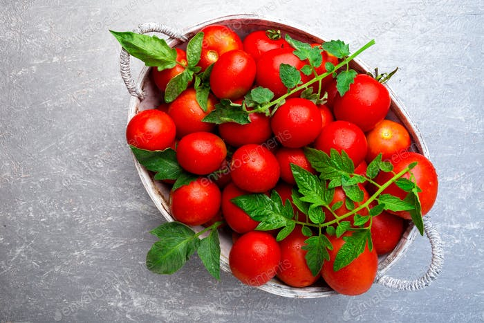 Red tomato in grey basket