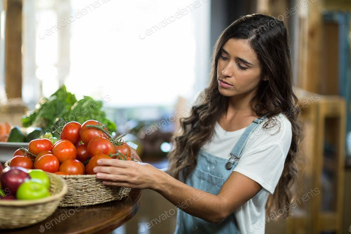 Woman choosing fresh tomatoes from the basket