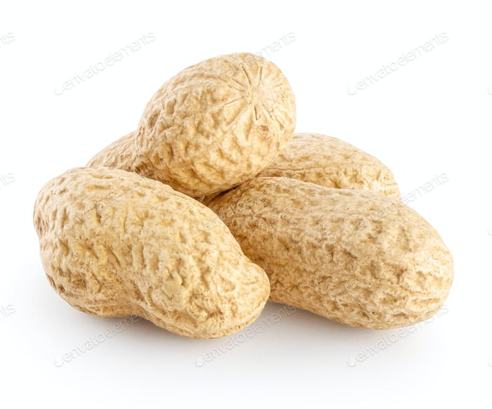 A peanut pods