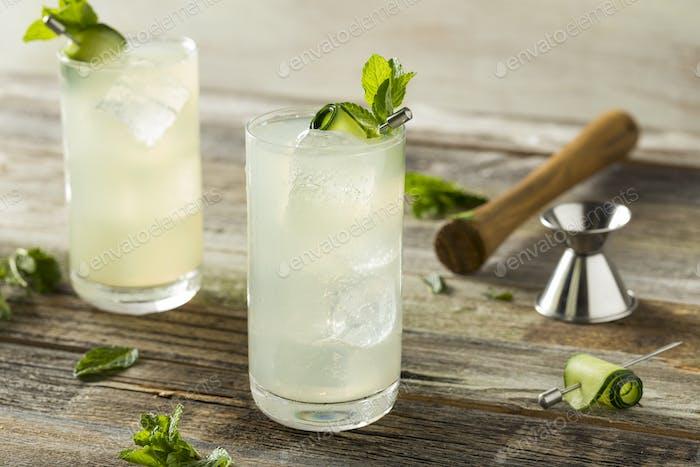 Refreshing Cucumber Gin Spritz Cocktail