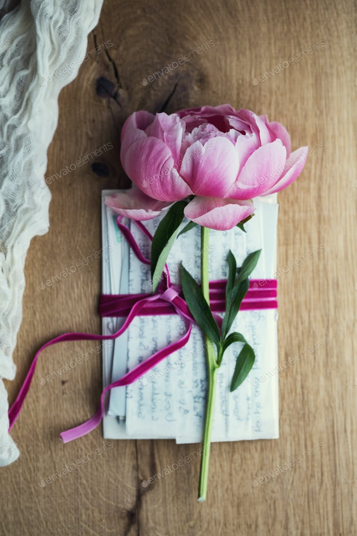 Old letters with peony rose