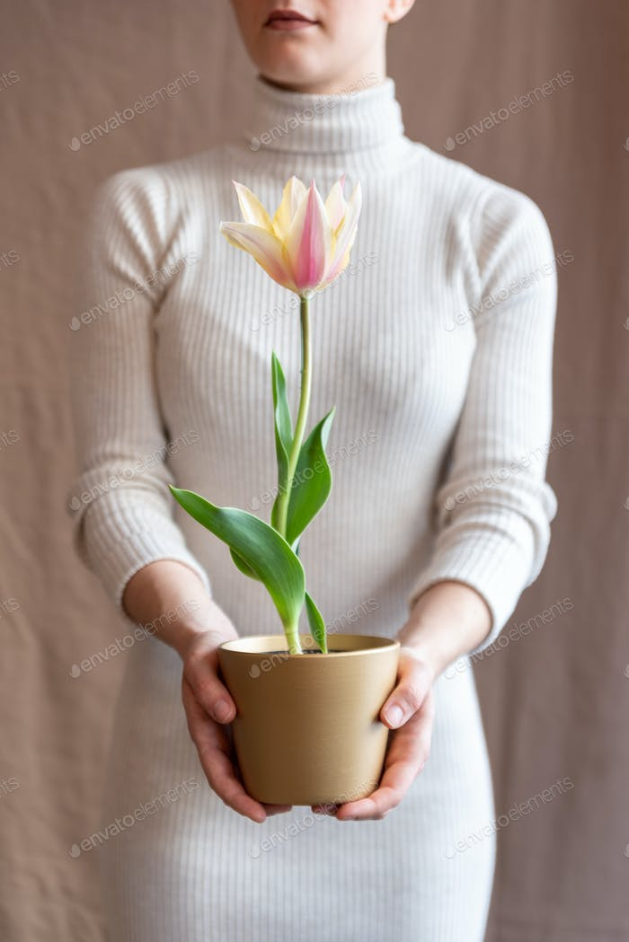 Woman holding a tulip pot