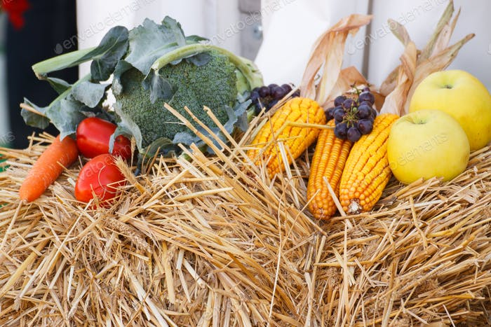 Fruit and vegetables on straw, agriculture on summer or autumn