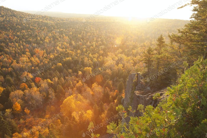 Backlit Cliff with Trees in Autumn Colors