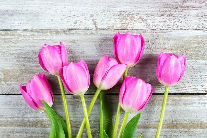 Mother's day Holiday Concept. Pink tulips flowers on wooden background.