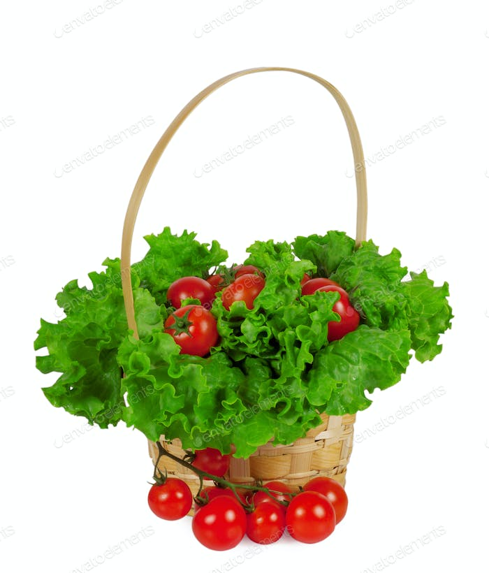 Ripe cherry tomatoes with lettuce in a basket
