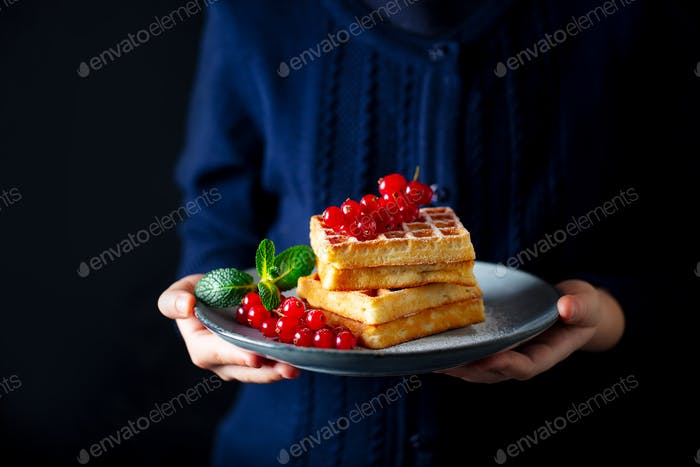 Woman's Hands Holding a Plate with Waffles and Fresh Berries. Copy space.