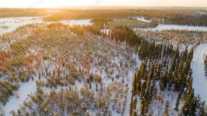 Aerial view of the lake and forest on a cold winter day sunrise