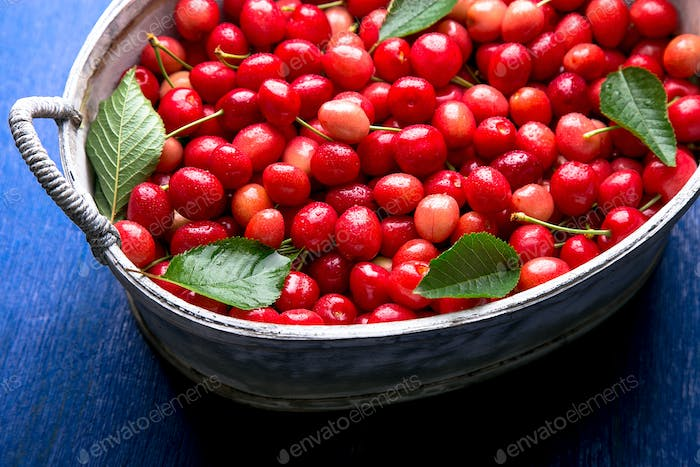 Red cherries in white basket on blue wooden background. Cherry close up. Top view.