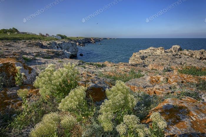 Küstenlinie Klippen