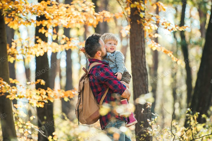 A mature father holding a toddler son in an autumn forest, walking.