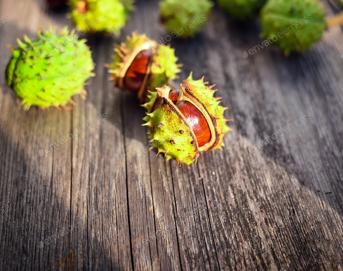 Chestnut in sunshine on old wooden background