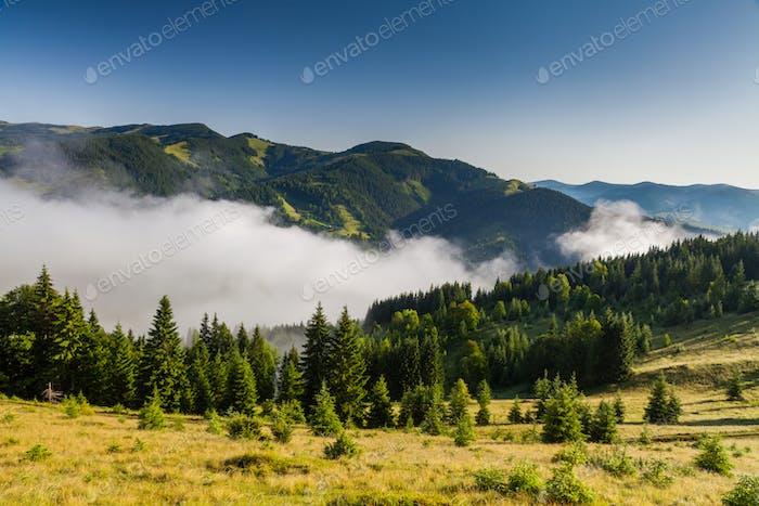 Nebelige Morgendämmerung in den Bergen im Sommer