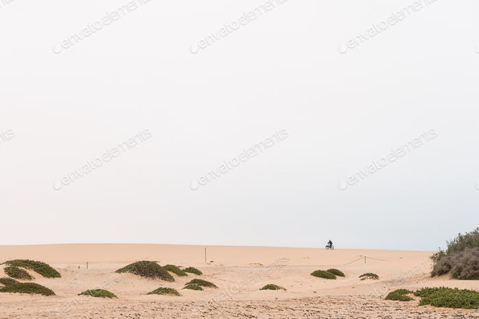 Cyclist on a fatbike on a dune at Swakopmund